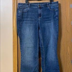 Lane Bryant Bootcut Jeans, 20 Long